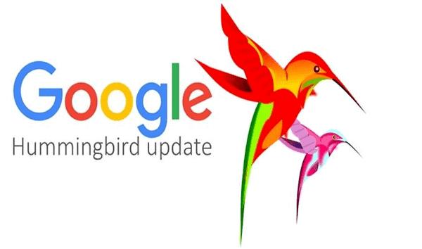 Dấu hiệu của Hummingbird là gì?