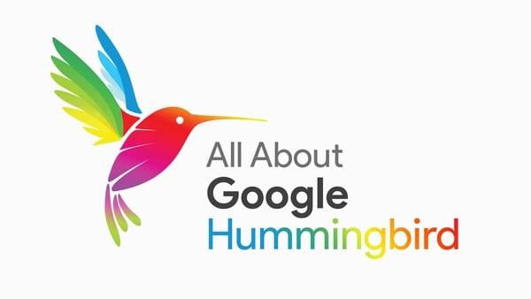 Google Hummingbird và Knowledge graph và Semantic Search là gì?