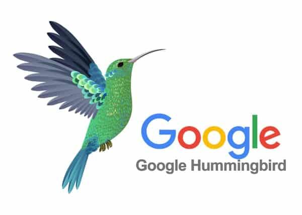Thuật toán Hummingbird và những điều cần biết khi làm SEO